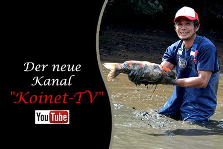 koinet-tv-auf-youtube