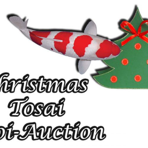 Christmas-Tosai-Auction Part 1