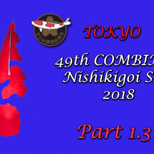 All Japan Show 2018 – Part 1.3 – Entry