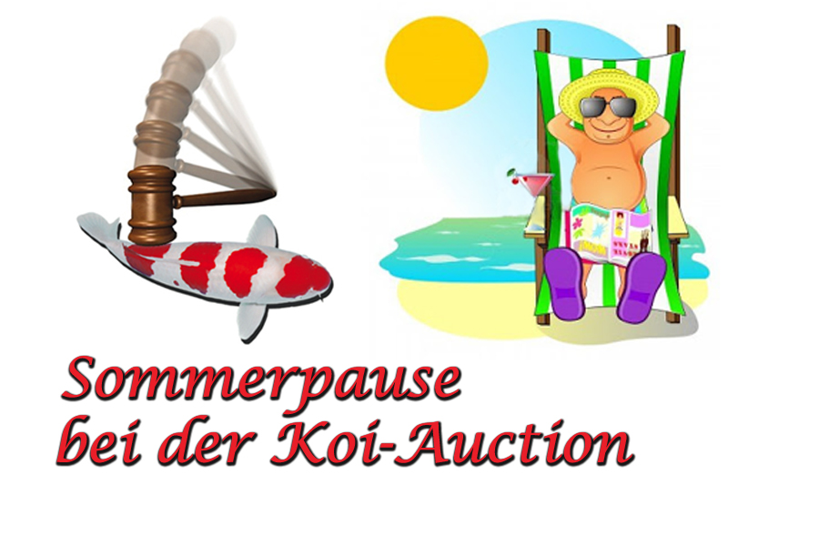 Sommerpause-Koi-Auction