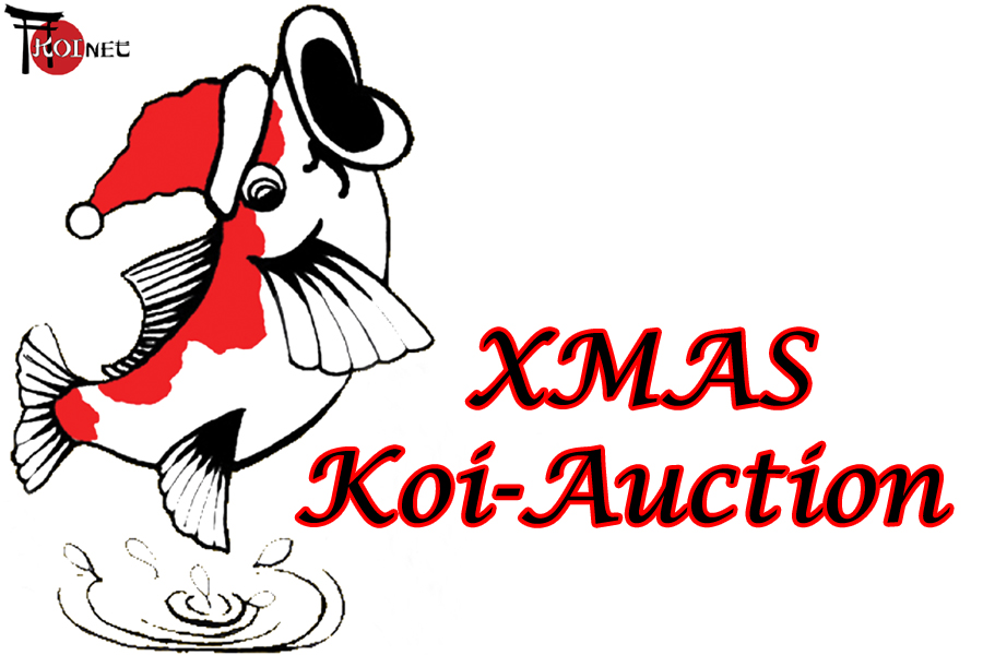 Xmas-Koi-auction